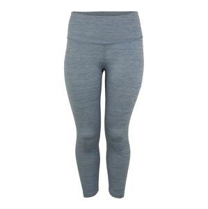 NIKE Športové nohavice  sivá / modrá