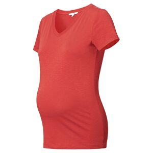 Noppies Tričko 'Arlesey'  červená