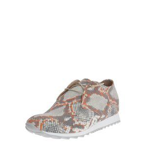 Donna Carolina Šnurovacie topánky  oranžová / béžová / svetlosivá