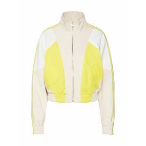 DRYKORN Prechodná bunda 'BOTTON'  žltá / biela
