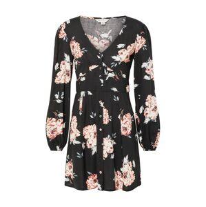 Miss Selfridge Letné šaty 'ANGELA'  zmiešané farby