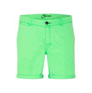 CHIEMSEE Športové nohavice  zelená