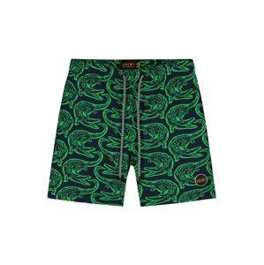 Shiwi Plavecké šortky  zelená