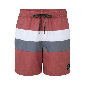 QUIKSILVER Plavecké šortky  červená / biela / sivá