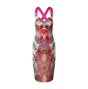 Ted Baker Kokteilové šaty 'Kloeey'  biela / ružová