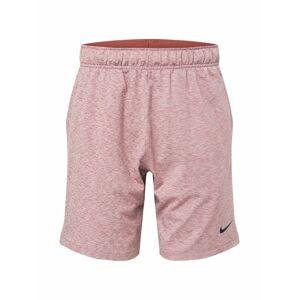 NIKE Športové nohavice  pastelovo červená / béžová / tmavomodrá