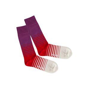 DillySocks Ponožky 'Heat Up'  béžová / fialová / červená