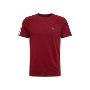 HOLLISTER Tričko  červená melírovaná / pastelovo červená / tmavomodrá / biela