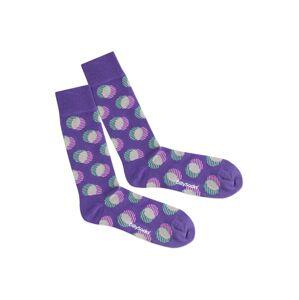 DillySocks Ponožky 'Optical Illusion'  béžová / fialová