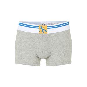 Calvin Klein Underwear Boxerky  sivá