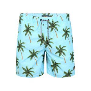 Shiwi Plavecké šortky 'palms'  zelená / svetlomodrá