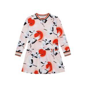 Molo Šaty 'Conny'  svetloružová / červená / čierna / biela