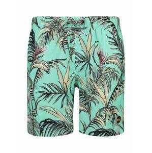Shiwi Plavecké šortky  tyrkysová / béžová / zelená