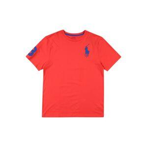 POLO RALPH LAUREN Tričko  červená / námornícka modrá