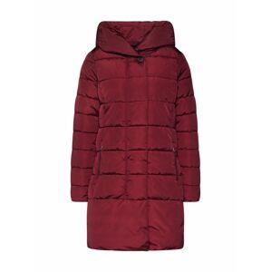 TOM TAILOR Zimný kabát  farba lesného ovocia