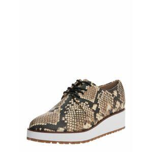 ALDO Šnurovacie topánky 'Lovirede'  biela / hnedá / čierna
