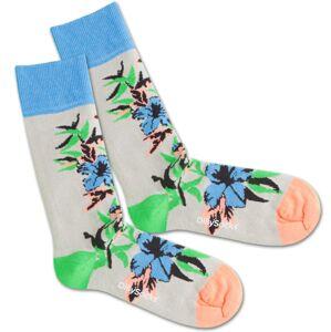 DillySocks Ponožky 'Old Flower'  modrá / sivá